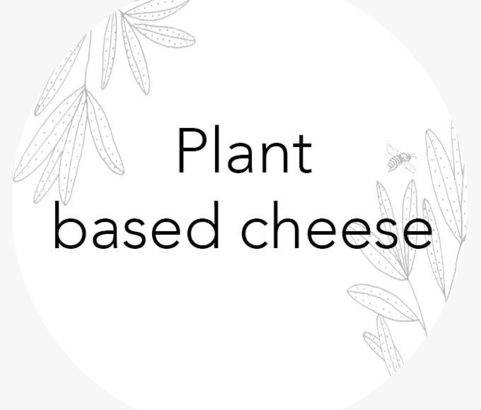 Plant based cheese