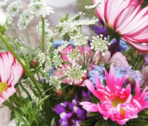 lokale bloemetjes pure markt